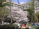 20050409_baba1.jpg