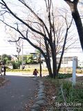 20081207_ritsuto04.jpg